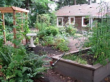 SUBMITTED PHOTO - Paul Lyons was one of the first participants in Lake Oswego's iteration of the Backyard Habitat program. He constructed several berms in his yard for native plants.