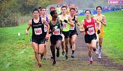COLIN HOUCK: FOR THE TIMES - Tualatin High School junior Adam Klein (left) ran to eighth place at Saturday's Class 6A state cross country championships.