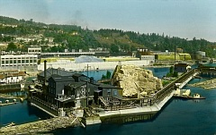 SUBMITTED PHOTO - This photo, taken in 1929, shows both the West Linn mill, background, far left, and Oregon City's Hawley Mill, black building foreground. Note the huge pile of pulp to the right of the OC mill.