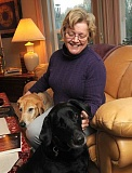 SPOKESMAN PHOTO: VERN UYETAKE - Tucked away in her Aurora home with her husband, David, and three labradors, Zoe Niklas set to work writing her memoir Driving in the Dark: A Childhood Memoir.