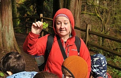 TIDINGS PHOTO: VERN UYETAKE - Leslie Dark of Trackers Earth shows an edible plant to kids at a March 27 Survival Camp.